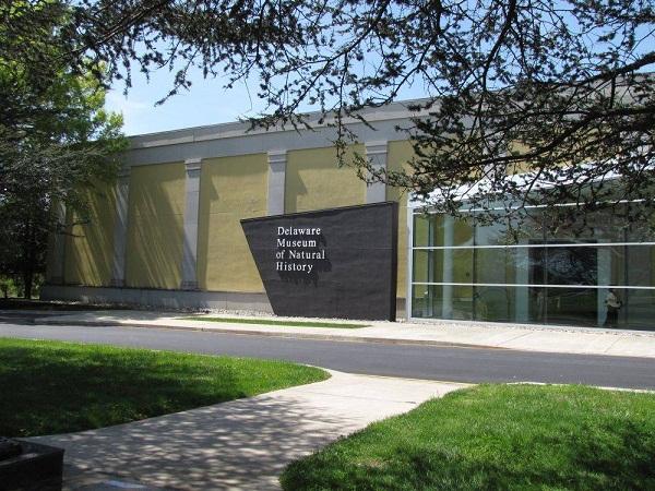 """Delaware Museum of Natural History"""